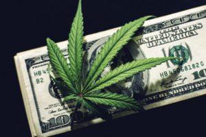 Volatile year for cannabis stocks