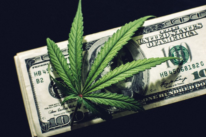 Volatile year for cannabis stocks